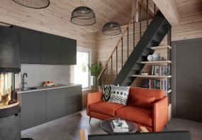 Pirts mājas dizains un 3D vizualizācijas